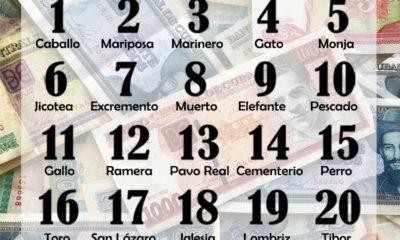Charada cubana o bolita numeros de hoy