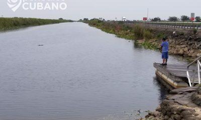 Encuentran cuerpo de un joven dentro de un auto sumergido en un canal de Broward