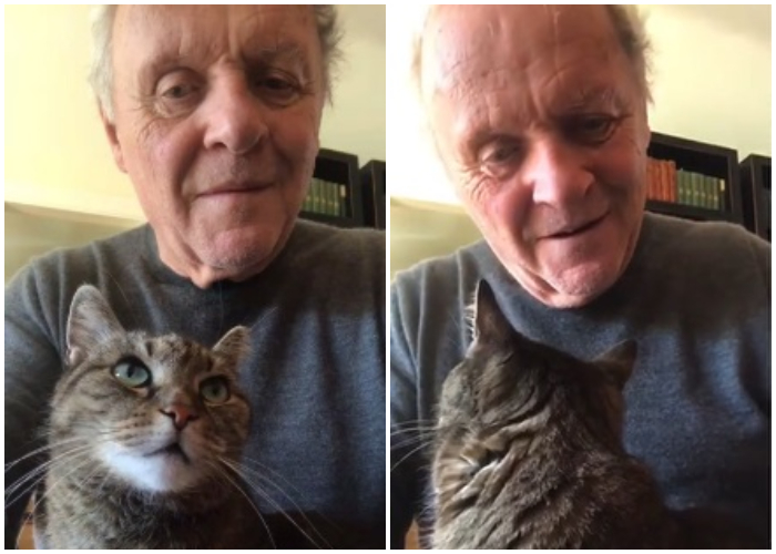 Actor estadounidense Anthony Hopkins pasa la cuarentena en casa junto a su gato