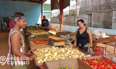 Campesinos proponen plan para evitar que la pandemia provoque una hambruna en Cuba