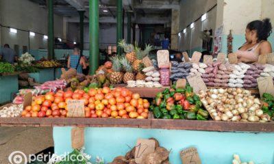Pedro Monreal considera muy difícil que la agricultura cubana alimente al país cuando pase el coronavirus