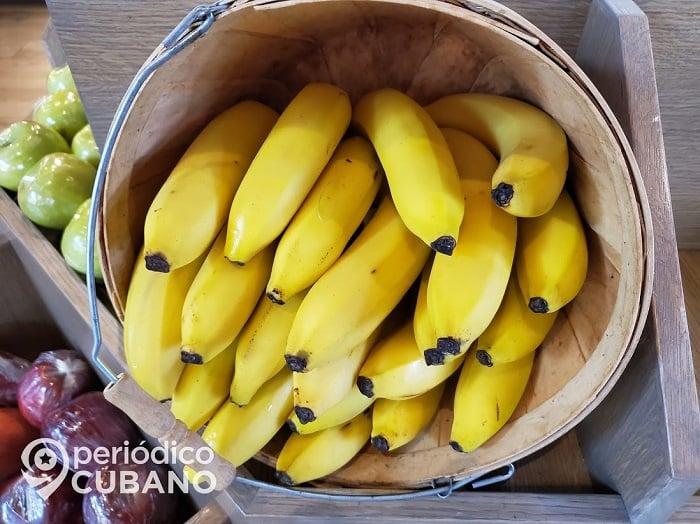 Plátanos en venta