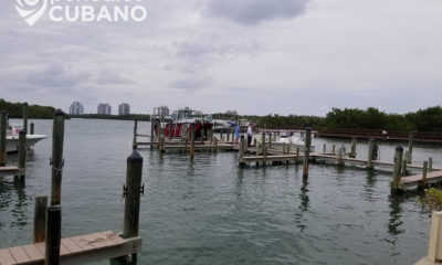 Autopsia confirma que el niño Alejandro Ripley murió por ahogamiento en un canal de Miami-Dade