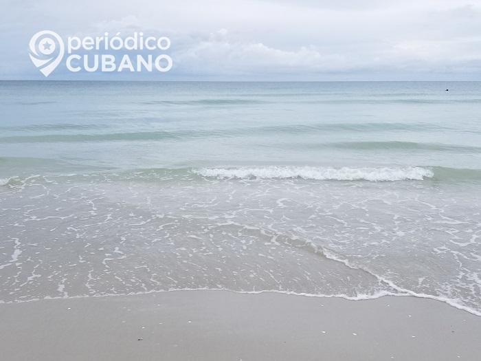 Tiburón ataca a un niño de siete años en una playa al suroeste de Miami-Dade