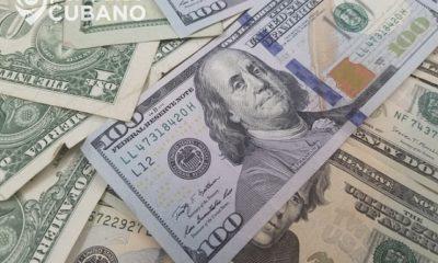 Dólares billetes de estados unidos