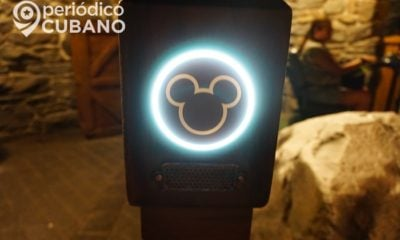 mickey mouse logo de disney world (1)