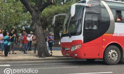 Matanzas reanuda la transportación interprovincial