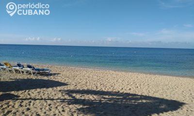 Reportan un tiburón en las playas cubanas
