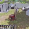 Familia de Miami-Dade víctima de robo en dos ocasiones por el mismo ladrón