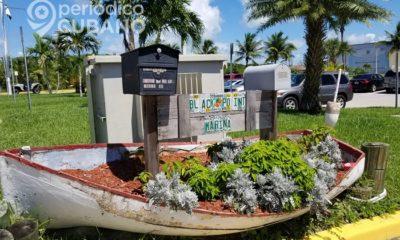 Más de 100 parques estarán abiertos en Miami-Dade desde el 28 de septiembre