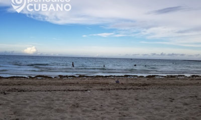 Fuerte corriente ahoga a un hombre en la playa de Haulover, en Florida