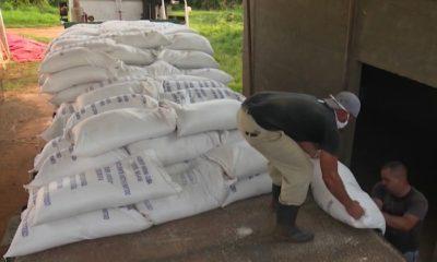 Autoridades detienen a 9 personas en Artemisa por venta ilícita de arroz