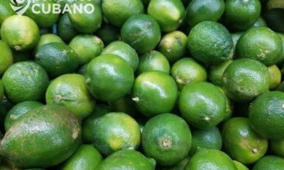 Vecino de Sancti Spíritus compró un solo limón a 10 pesos nacionales