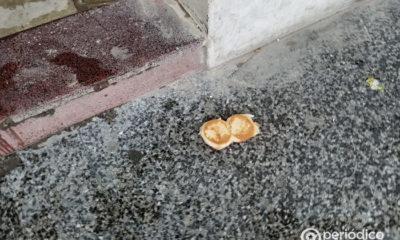 Habilitan líneas telefónicas para denunciar la mala calidad del pan en Santiago de Cuba