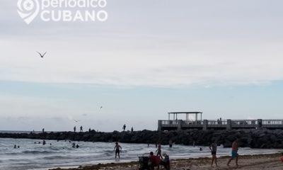 Niño de 9 años trasladado al hospital tras ser mordido por un tiburón Miami-Beach