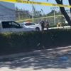 Tiroteo mercado Hialeah Gardens deja un muerto dos heridos estado crítico