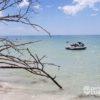 ¿Vacaciones en la playa?, Cancún ofrece excursiones para conocer y divertirse en el Caribe