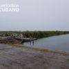 Encuentran a dos niñas muertas en un canal de Broward