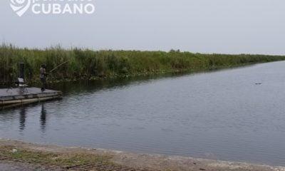 Identifican a las niñas que encontraron muertas en un canal de Broward