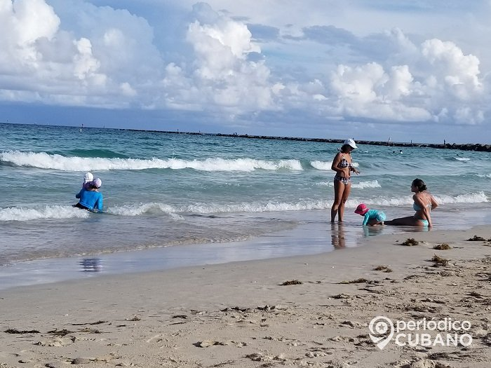 Tiburón martillo se acerca peligrosamente a la orilla en una playa de Florida