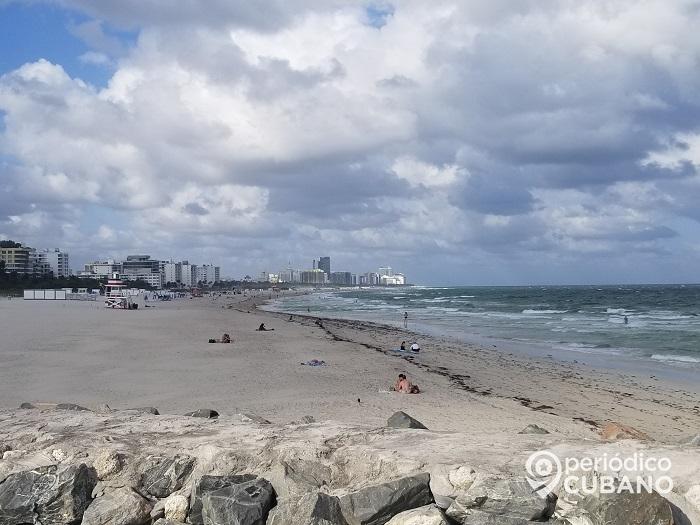 Tiburones se acercaron a tres bañistas en Miami-Dade