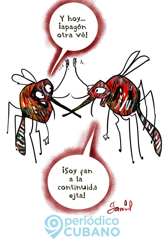Garrincha-apagones-Cuba-mosquitos