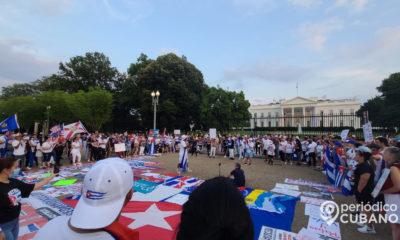 cubanos frente a la casa blanca (7)